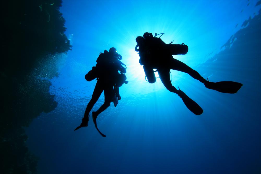 Denizin Dibinde Bir Fotoğraf Makinesi Mi?